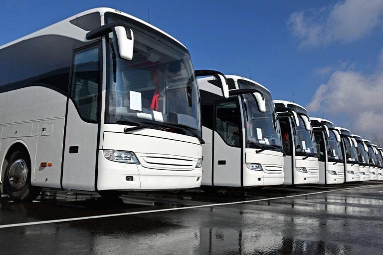 Flota białych autokarów